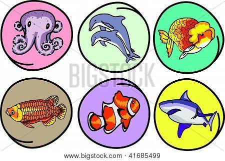 A Set Of Aquatic Animal On Round Background