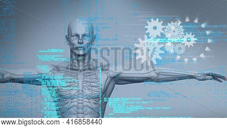 Composition of data processing with cogs over human digital model. global technology, digital interface and data processing concept digitally generated image.