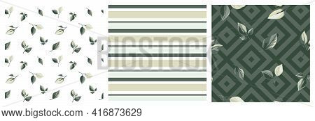 Green Silver Leaves Pattern, Stripes, Navy Green Rhombus Vector Illustration. Nature Green Foliage T