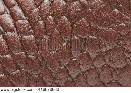 Crocodile Brown Leather Texture Pattern Macro Close Up View.