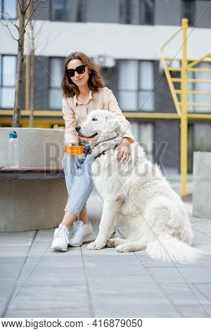 Woman Gives A Water In A Bowl To Her Big White Dog While Sitting On Bench In Courtyard Of The Reside