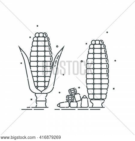 Corn On White Background. Organic Food. Healthful Product. Young Ear Of Maize With Leaves And Withou