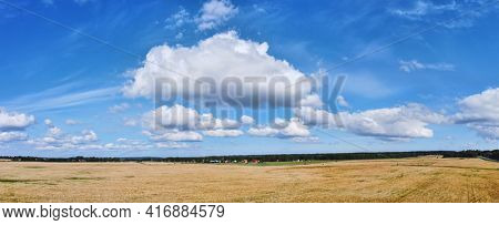 landscape with wheat field under blue sky and clouds