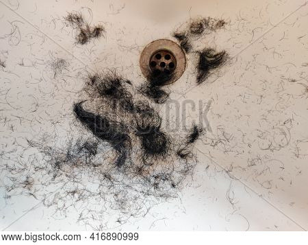 Lot Of Hairs Found In White Sink Or Wash Basin After Trimming Beard And Hair Cut. Clean Shave Concep