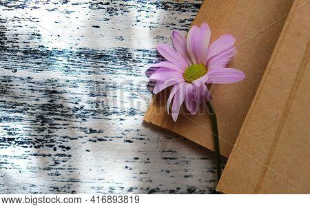 Blurred Vintage Notepad Or Book With Summer Flower Chamomile. Nostalgic Vintage Background.