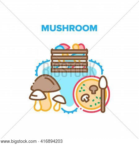 Mushroom Food Vector Icon Concept. Mushroom In Wooden Box Package, Ingredient For Delicious Vegetabl