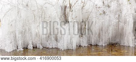 Beautiful Frozen Ice Icicle Structures Hanging From Trees In Winter In Norfolk England