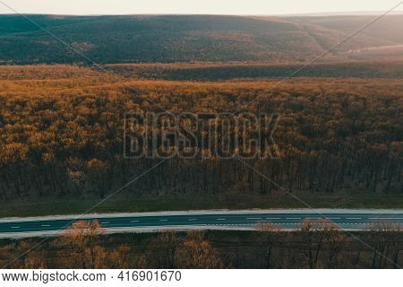 Aerial Top View Of Autumn Trees In Leafless Forest Background At Sunset. Driving Along The Forest Ro