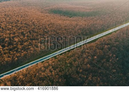 Aerial View Of On Asphalt Road In Leafless Forest At Sunset. Cinematic Drone Shot Flying Over Straig