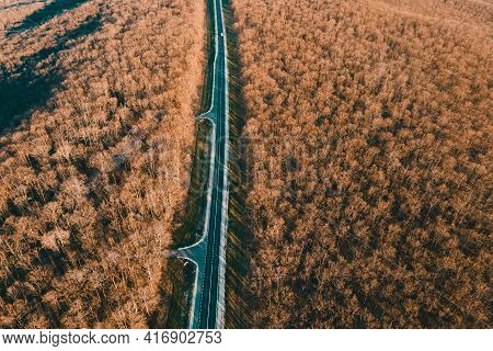 Aerial View Of Cars Driving On Asphalt Road In Leafless Forest. Cinematic Drone Shot Flying Over Str