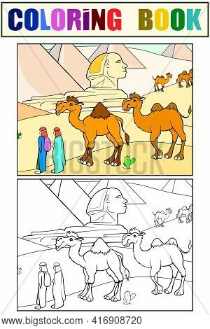 Egyptian Desert, Camels Tourist Attraction. Set Of Coloring Book And Color Picture.