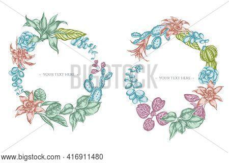 Floral Wreath Of Pastel Ficus, Iresine, Kalanchoe, Calathea, Guzmania Cactus Stock Illustration