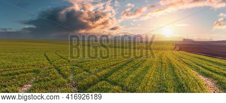 A Large, Green Farm Field. Agricultural Land Against The Backdrop Of Sunset And Large Rainy Clouds.