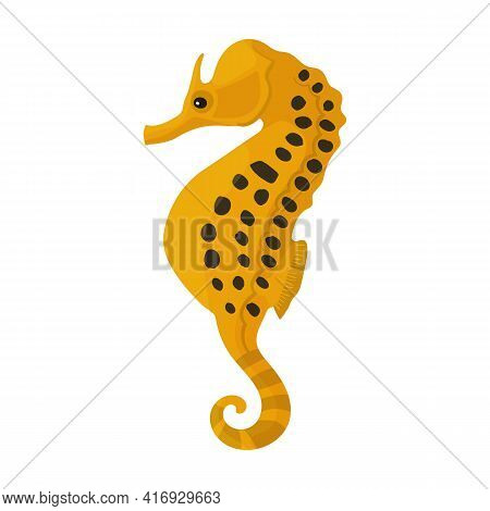 Sea Horse Vector Icon.cartoon Vector Icon Isolated On White Background Sea Horse.