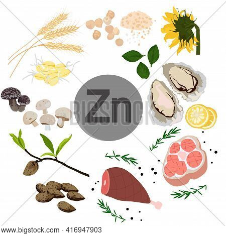 Zinc Vector Stock Illustration. Food Products With A High Content Of The Mineral. Oysters, Chickpeas