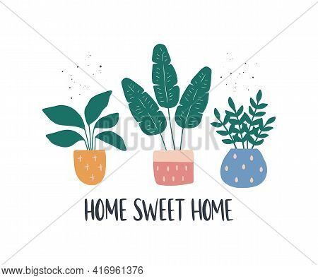 Trendy Home Decor With Hand-drawn House Plant. Urban Jungle Vector Cartoon Illustration. Modern Pott