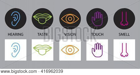 Doodle Sense Organs. Cartoon Icon With Sense Organs. Line Symbol. Stock Image. Vector Illustration.