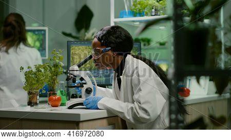 Biologist Woman Examining Biological Slide For Medical Expertise