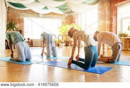 fitness, sport and healthy lifestyle concept - group of people doing yoga camel pose on mats in gym or studio