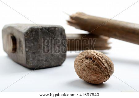 Walnut With Sledge Hammer