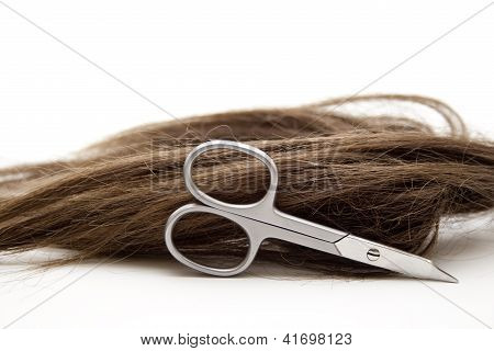 Periwig with Scissors on white background