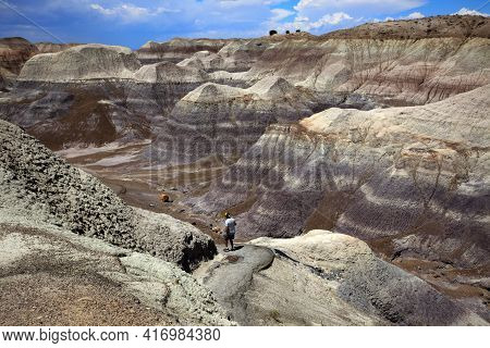Arizona / Usa - August 01, 2015: Petrified Forest National Park Landscape, Arizona, Usa