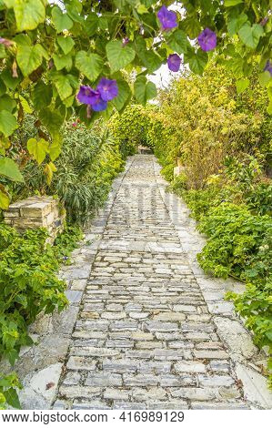 November 2020. Kato Drys In Larnaca District, Cyprus. Garden In The Traditional Village Of Kato Drys