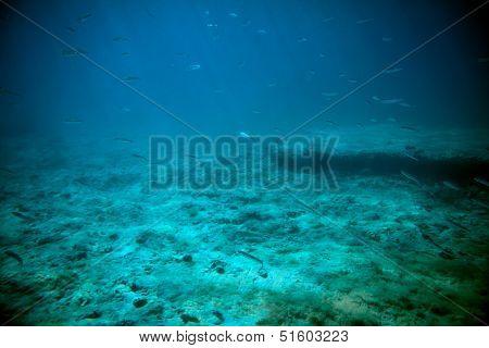 Adriatic Sea Underwater View Beneath Surface