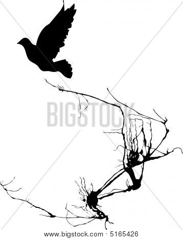 Shadow of a bird takes wing from the branches of a tree. poster