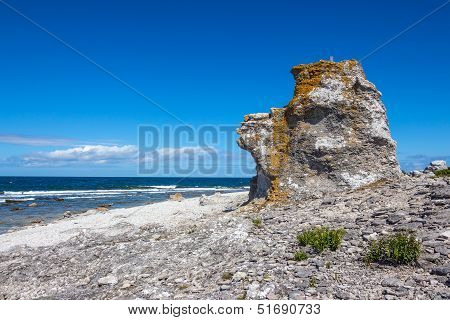 Cliff On The Baltic Sea Coastline In Sweden