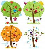 Vector Set of Four Seasons Trees with Birds poster