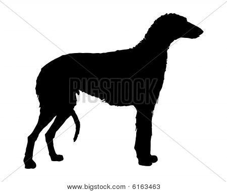 The Black Silhouette Of A Scottish Deerhound
