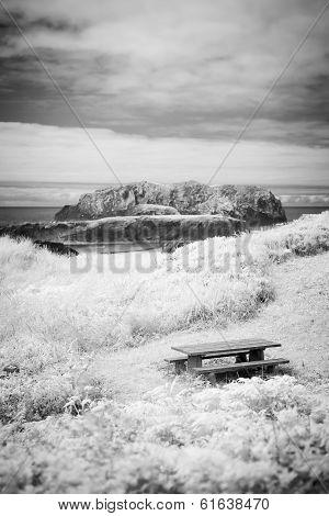 Picnic Table On Oregon Coast