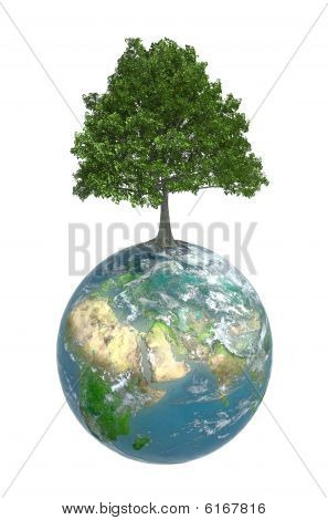 Mother nature - tree growing on top of the Earth poster
