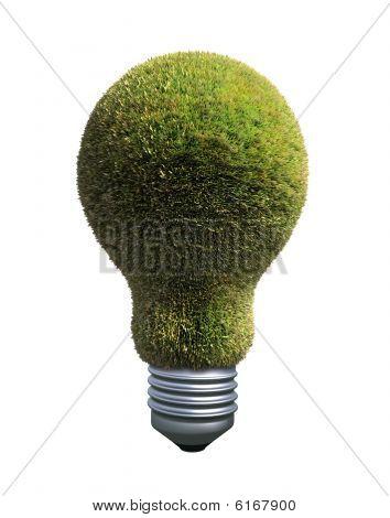 Green bulb -