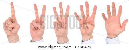 Hand Fingers Number