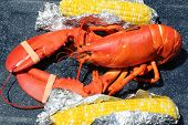 Boiled Maine lobster with corn in Bar Harbor, Maine poster