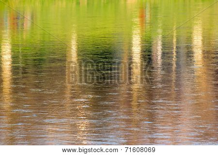 Abstract Autumn Trees Reflection In Water