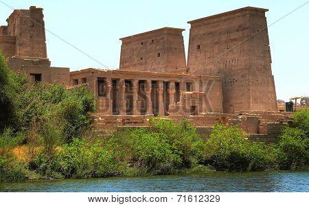 Temple Complex In The Agilkia Island (egypt)