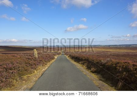 Moorland Country Road