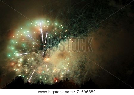Celebrating Firework In The Black Night Sky