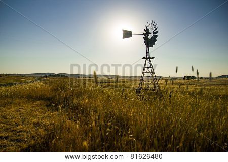 Windmill Silouhetted In Rural Wheat Field
