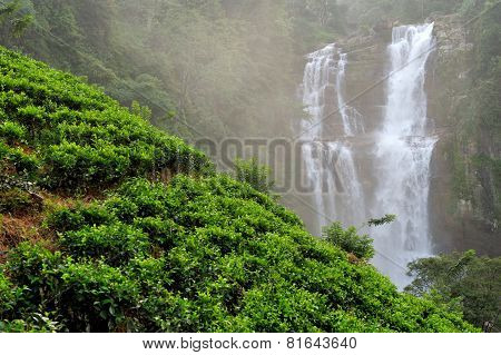 Beautiful Ramboda waterfall in Sri Lanka island poster