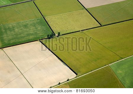 Canterbury Farmland