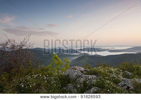 Flower Mountain Landscape