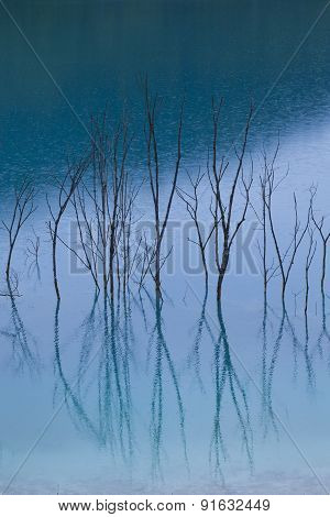 Blue Water Reflection