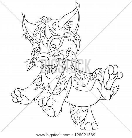 cute and happy smiling wildcat lynx (bobcat) isolated on a white background