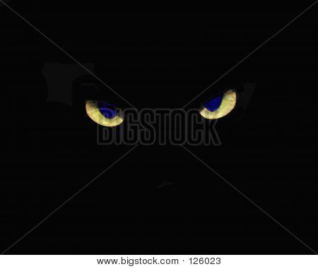 Crossed Cat Eyes