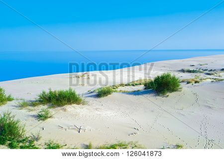 Summer landscape with white sand dunes, bushes and sky. Curonian Spit, Baltic sea. UNESCO World Heritage Site.