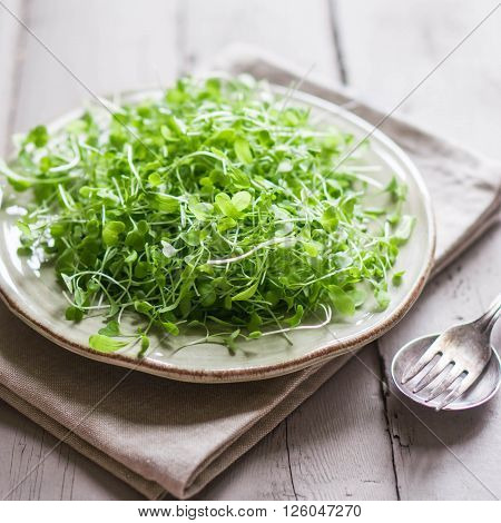 Image of Raw Sprouts(microgreens) On Wooden Background